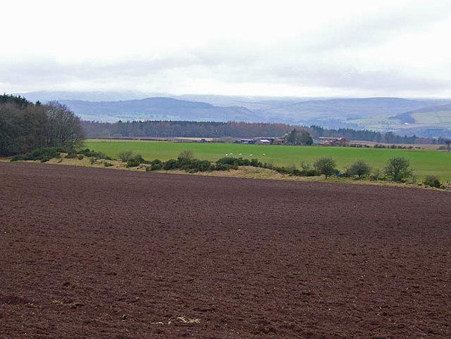 Mixed farmland near Muirmouth