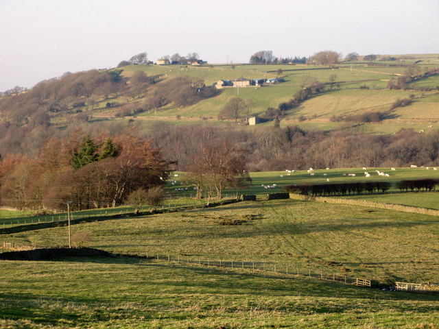 Pastures above the River East Allen (4)