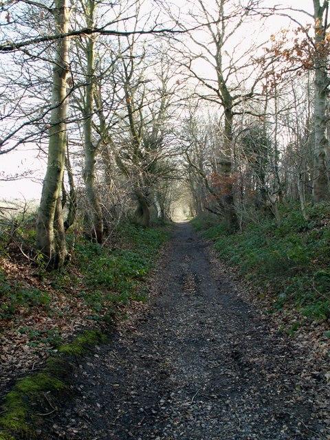 Hugset Wood footpath to Higham Bottom