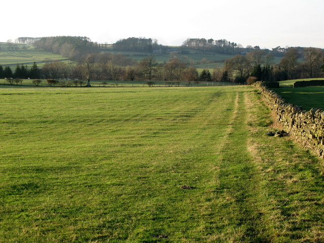 Pastures west of Pia Troon (2)