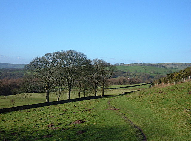 Footpath to Danebridge