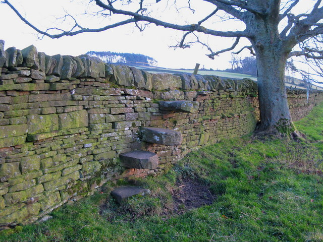 Stone stile on the footpath to Finney Hill Green