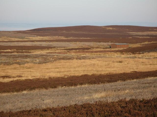 Burntridge Moor