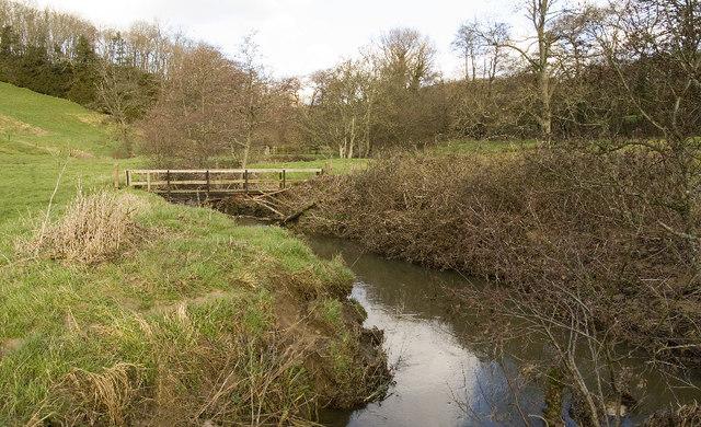 River Parrett below Broom Croft Copse