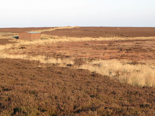 Moorland below Crawberry Hill