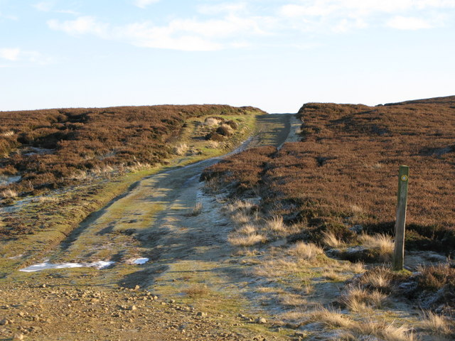 Track on Burntridge Moor (3)