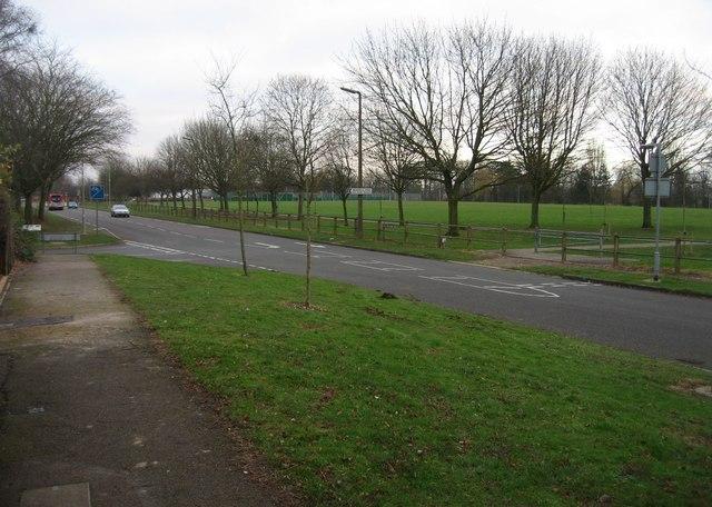 Winklebury Way - looking east