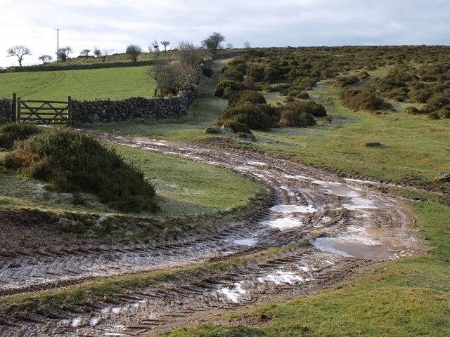 Moorland scene near Rowden
