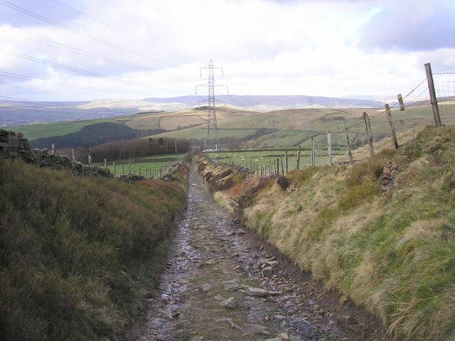 Lane at Ogden