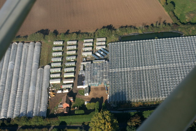Oakington Tomato Farm
