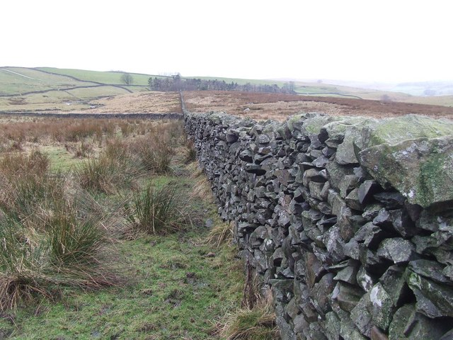 Dry Stone Wall amidst Rough Grazing Land