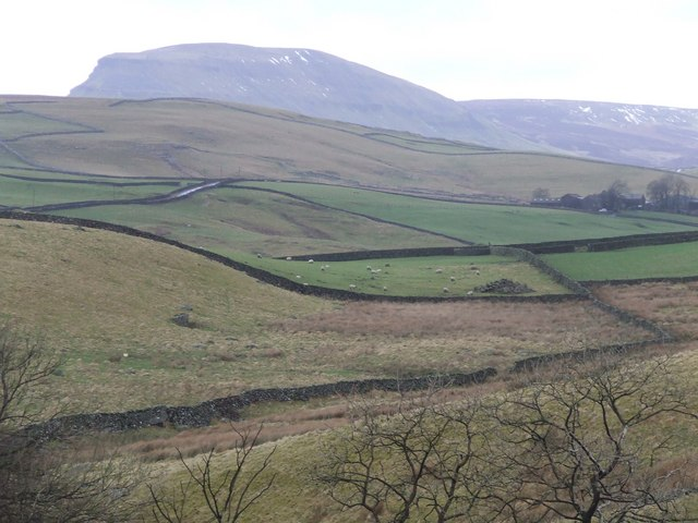 Rough Grazing land north of Catrigg Force