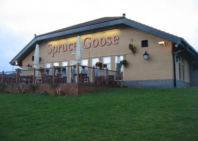 Spruce Goose & decking