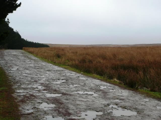 Track across the moors