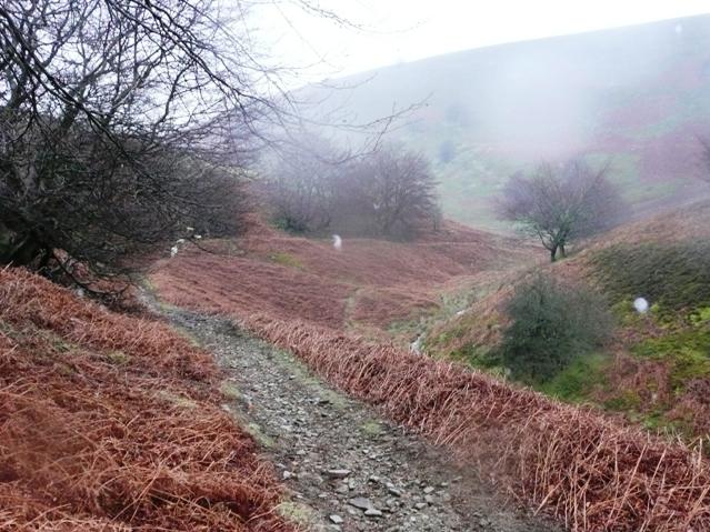 Descending Cwm Sychan