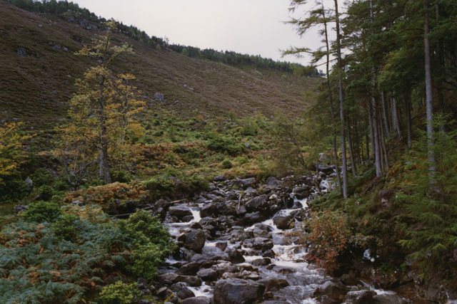 The Allt Coire Roill