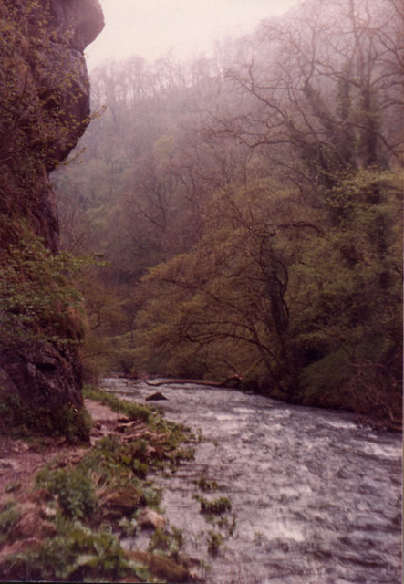 River Dove at Lion Head Rock