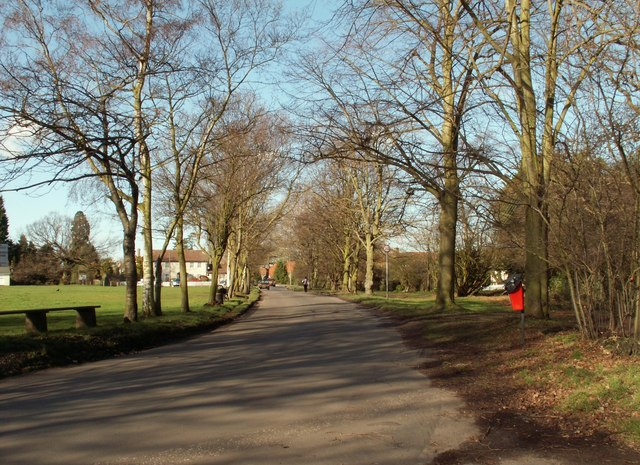 A view of Common Road at Stock