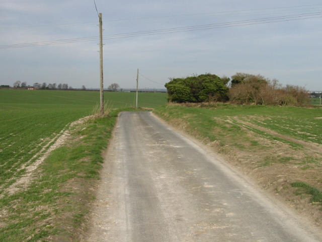Looking N along lane to West Street and Finglesham
