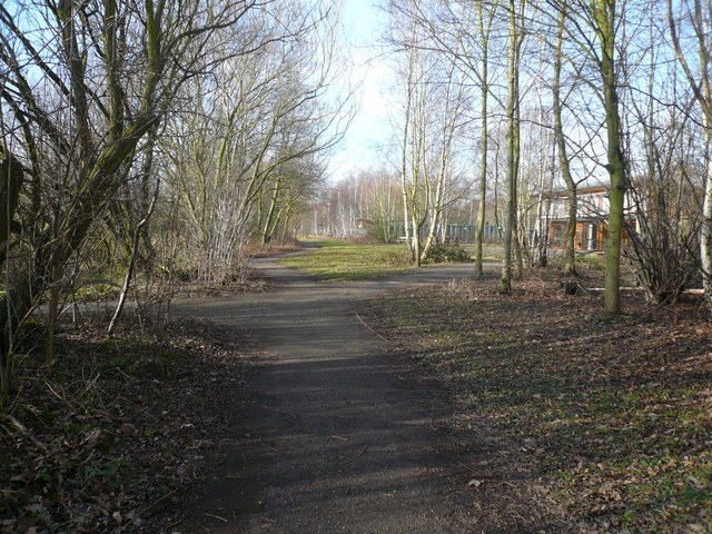 Potteric Carr Nature Reserve