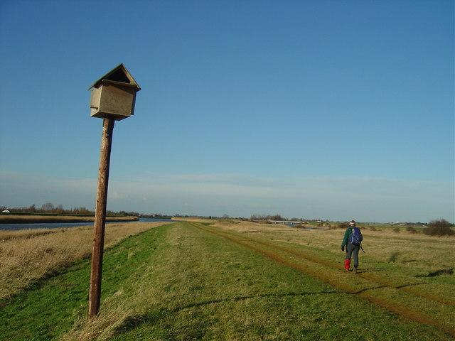 Owl box on Ouse Valley walk near King's Lynn