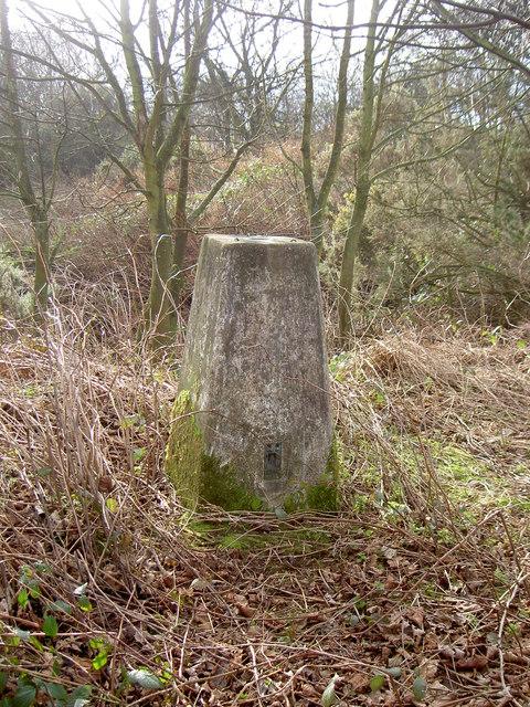 Triangulation Pillar near Clatterbridge Hospital.