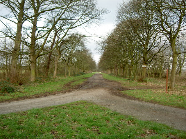 Wide Driveway near Brimstage.