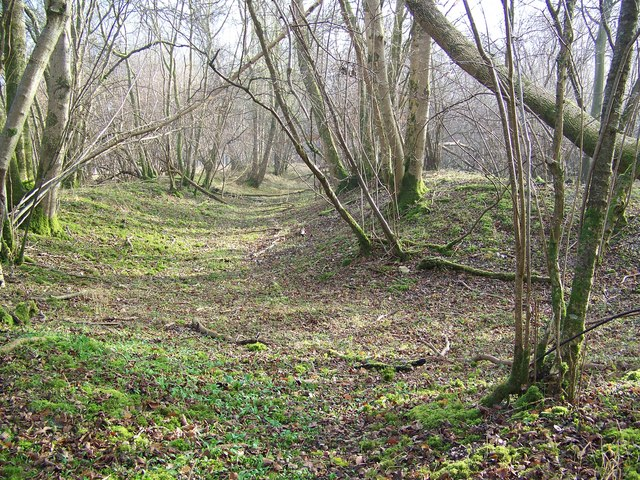 Earth work, Vernditch Chase