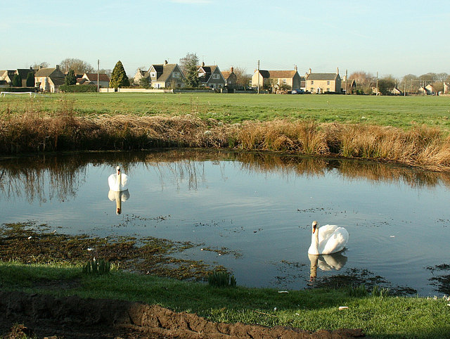 2008 : Village Pond, Broughton Gifford