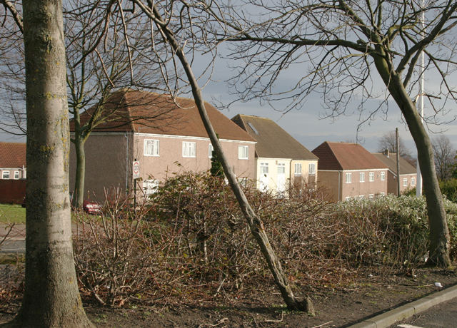 Houses in Throckley