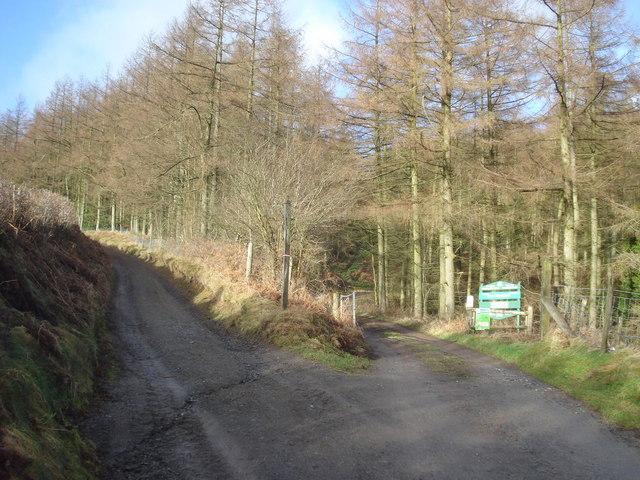 Entrance to Cwm Broadwell Wood