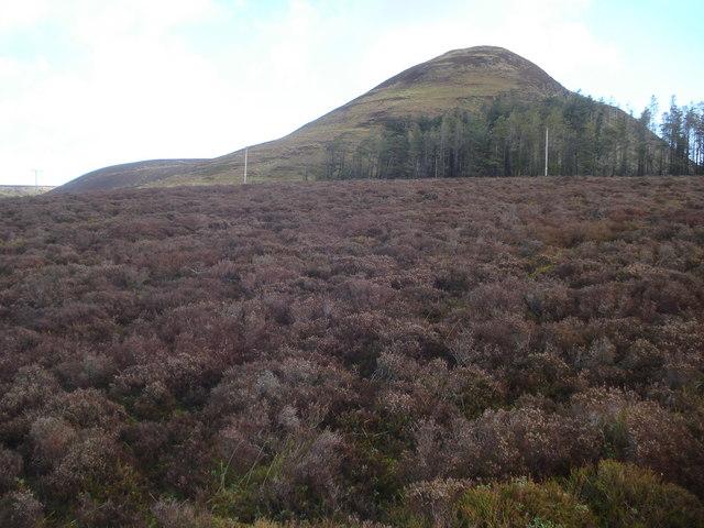 Moorland at Mynydd yr Eithin