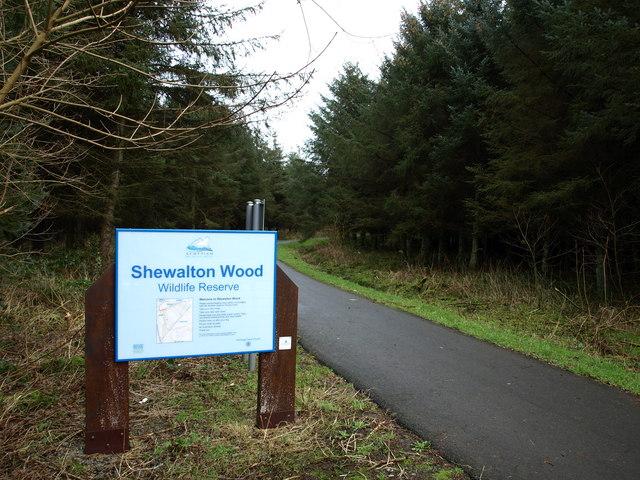 Shewalton Wood