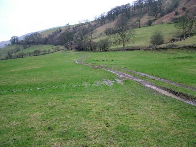 Bridlepath across the field