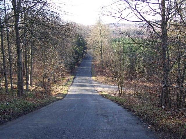 Hill On Startley Lane