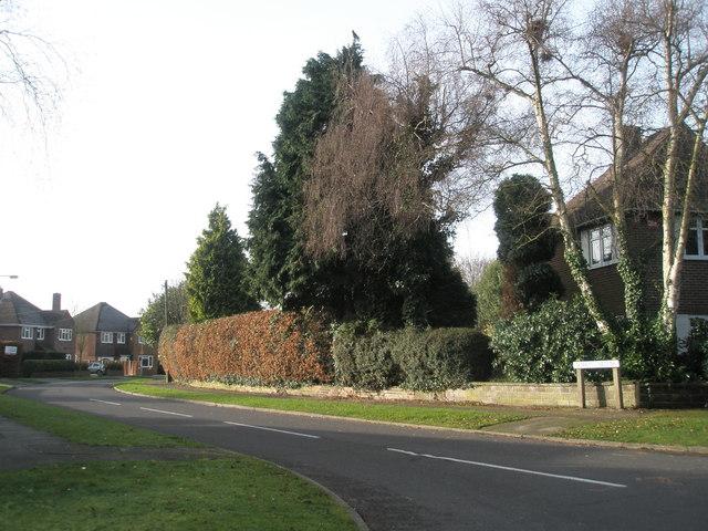 Norris Gardens