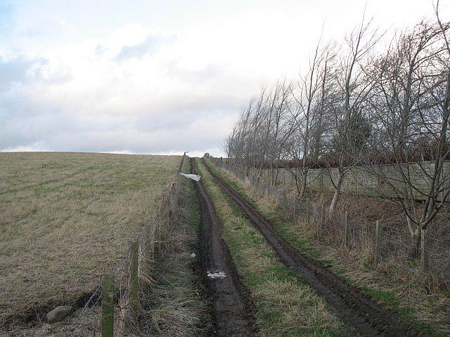 Farm track, Torcraik