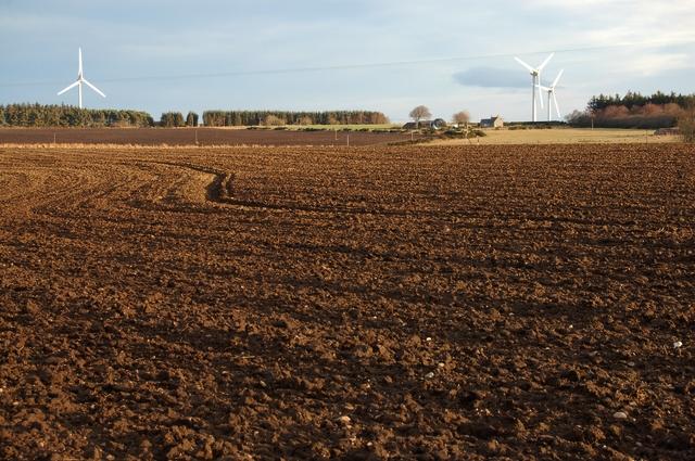 Field at Broadleys