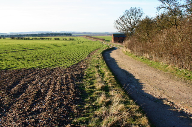 Rat Hall Farm track