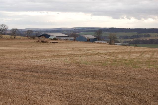 South Colleonard Farm