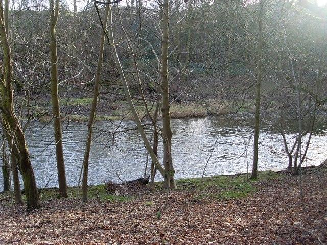 River Kelvin in Kelvingrove Park