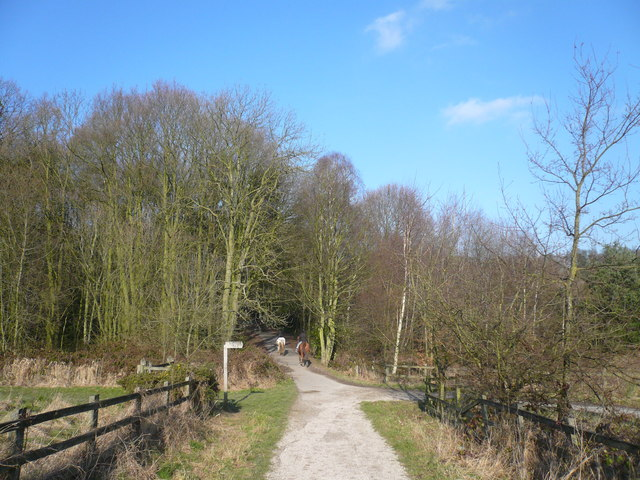 Shipley Country Park - Nutbrook Trail View