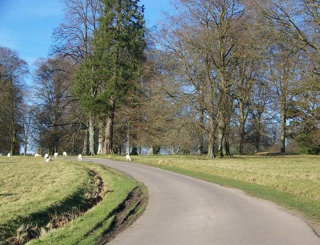 Rushmoor Park