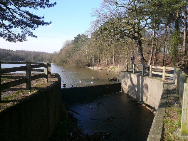 Shipley Country Park - Osborne's Pond Overflow View