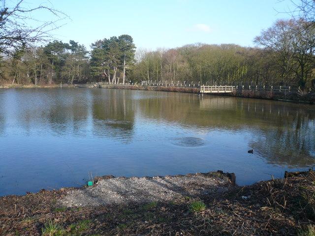 Shipley Country Park - Osborne's Pond View
