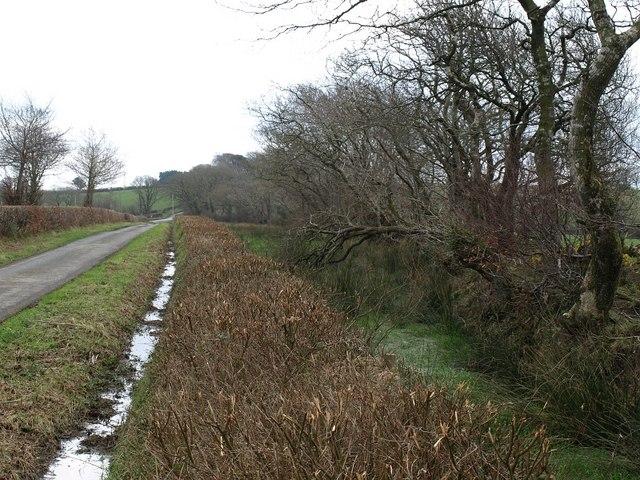 Ditches near Shepherds Bush Farm