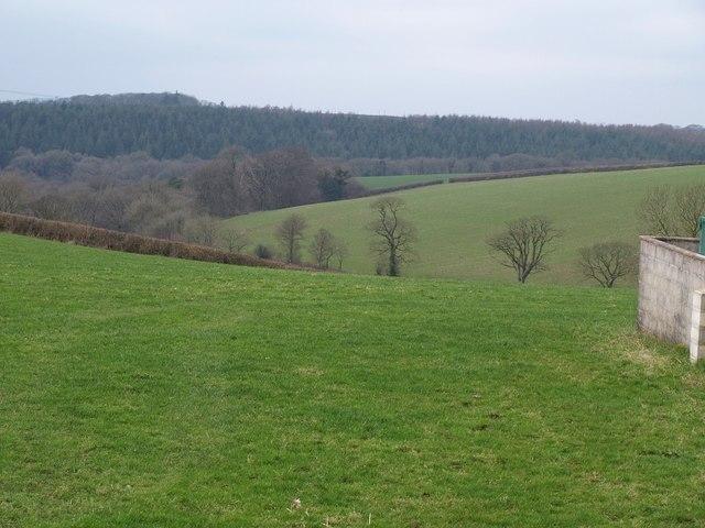 Towards the Deer valley