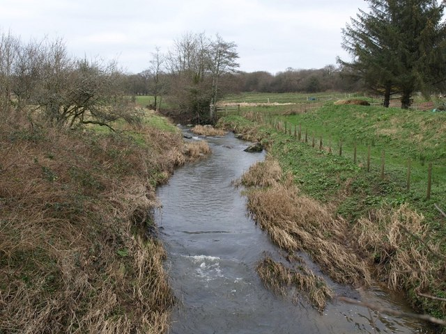 River Deer at Forda Mill