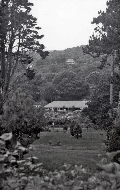 Botanic Garden, Undercliff, Ventnor, Isle of Wight