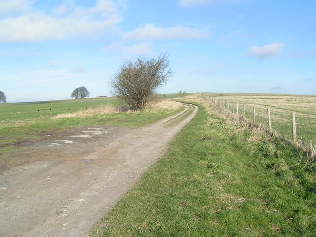 A section of the Ridgeway